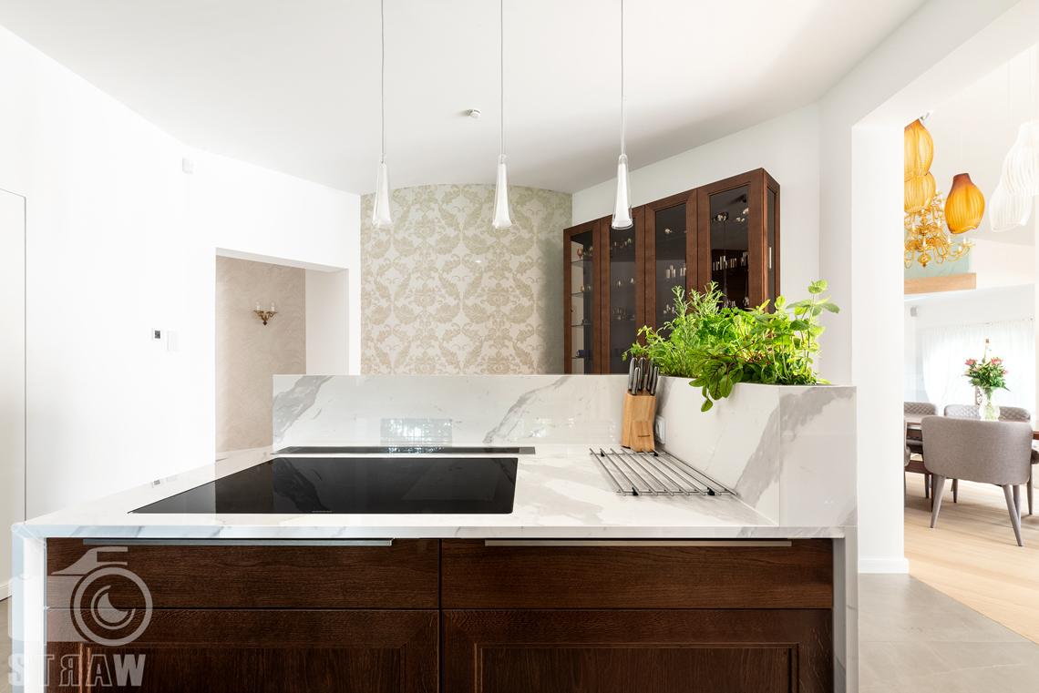 Fotografia wnętrz domu zaprojektowanego przez biuro projektowe, kuchnia i wyspa kuchenna oraz zielnik.