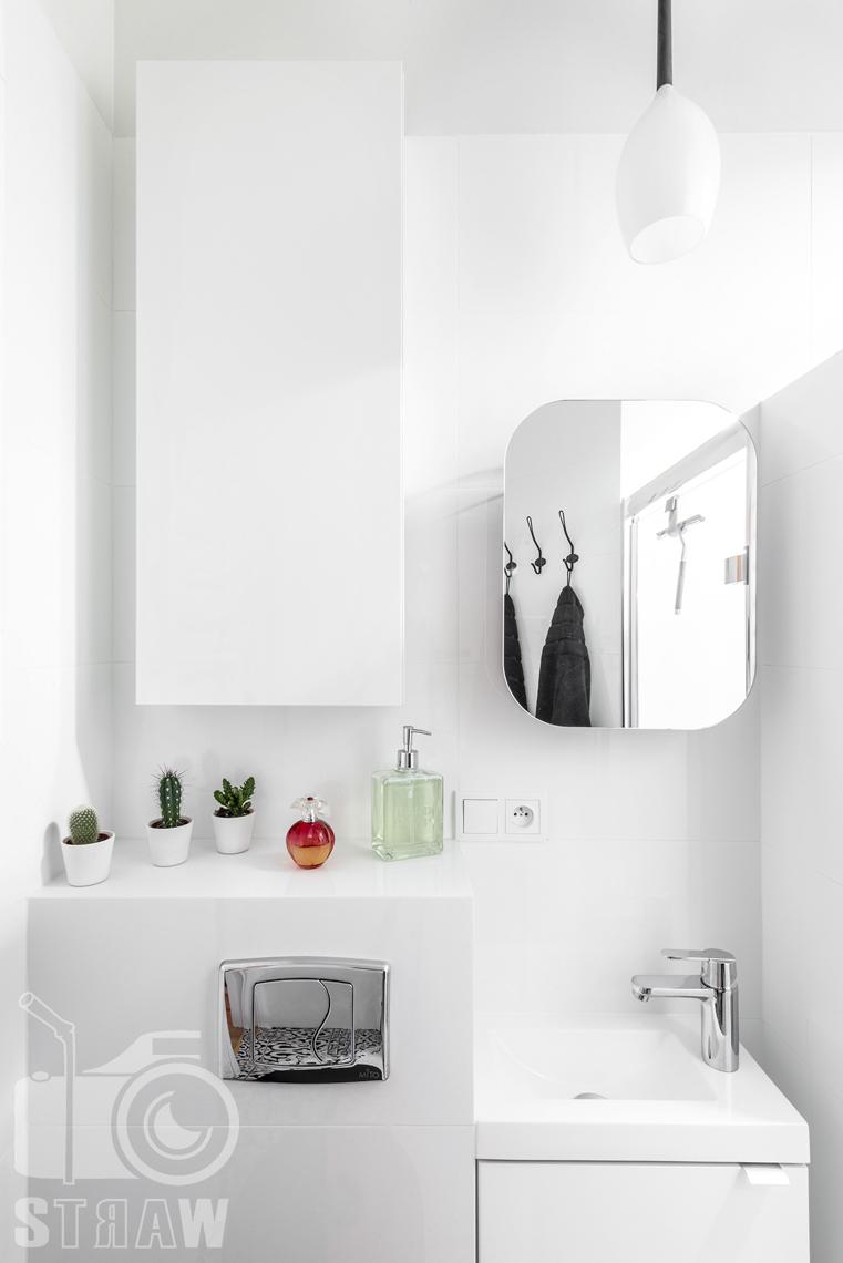 Fotografia booking, zdjęcia apartamentu, łazienka z umywalką i lustrem, na półce kaktusy.